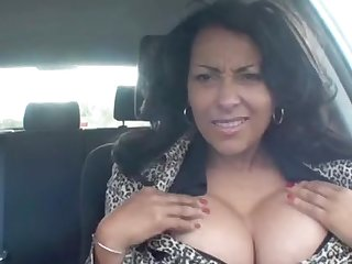 Fabulous babe Danica Collins shows their way connected with boobs in the car